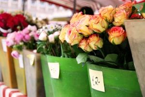 kwiciarnia pełna kwiatów